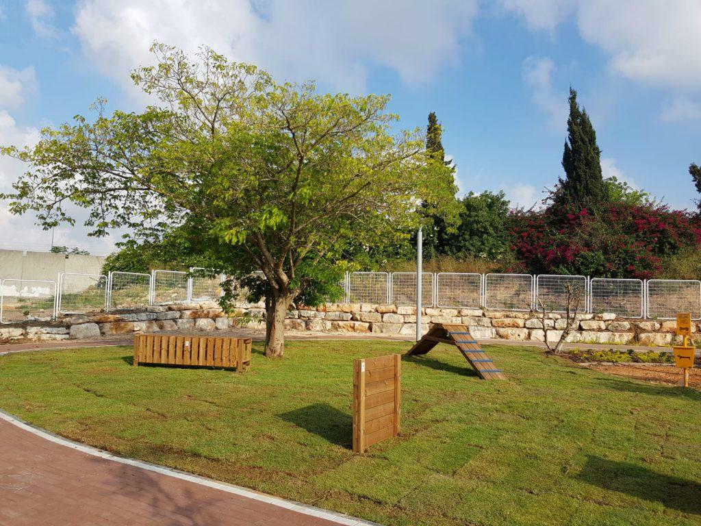 פארק כלבים בעכו