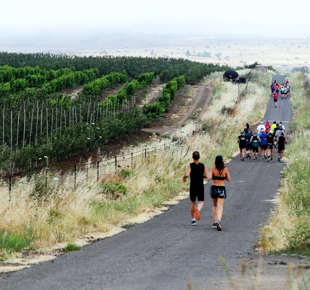 כפר הריצה הראשון בישראל HIDE AWAY