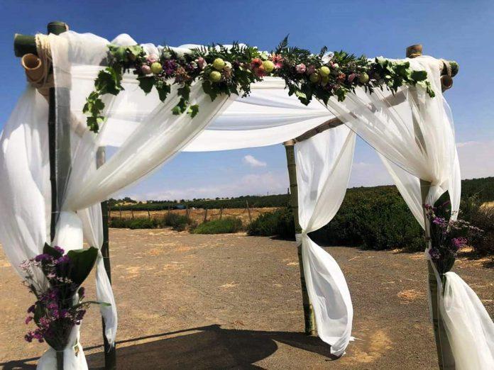 תיירות עין זיוון מזמינה זוגות לערוך חתונה בבוסתן